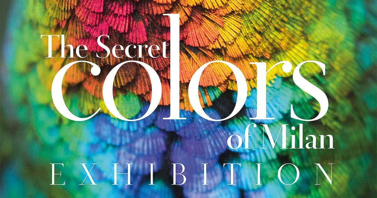 """Mit den """"Secret colors of Milan"""" wird das italienische Feingefühl für die Welt der Farben erkundet."""