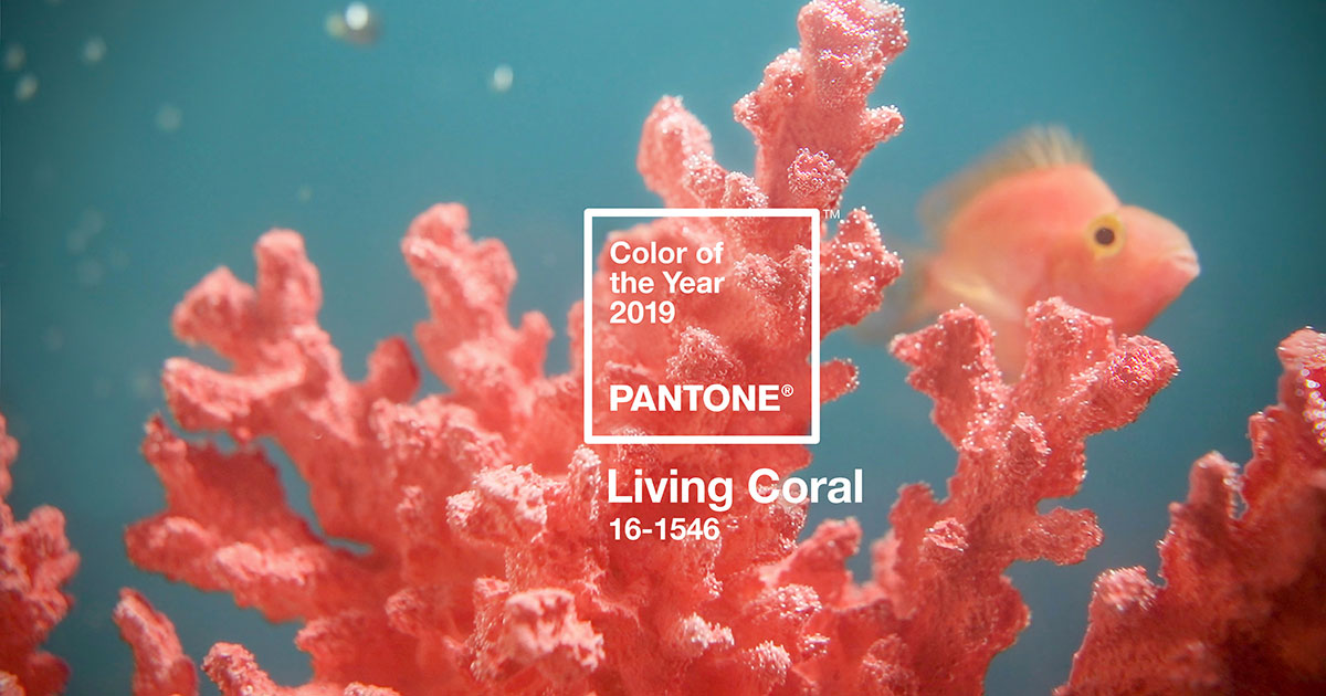 Living Coral ist die Pantone Color of the Year 2019.