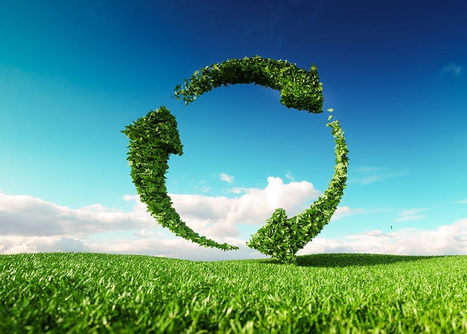Kunden legen immer mehr Wert auf nachhaltige Produktion. (Credit: petrmalinak / Shutterstock)